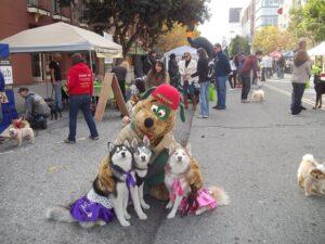 DogFest2